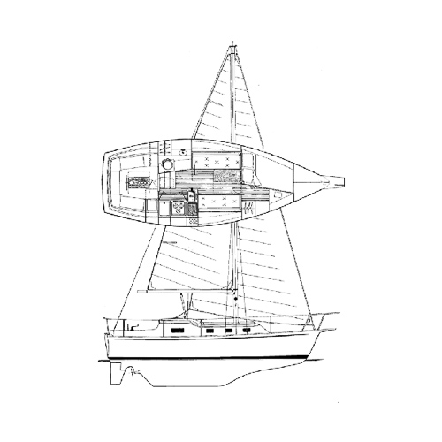 Illustration of a Bombay Clipper 31
