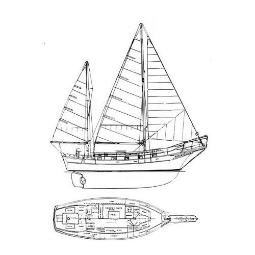 Illustration of an Island Trader 38