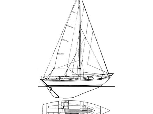Illustration of a Rustler 31
